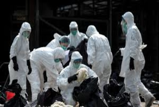 Вьетнам коронавирус Нячанг - как обстоят дела в городе